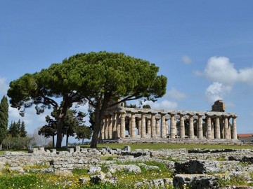 Paestum and the Temples